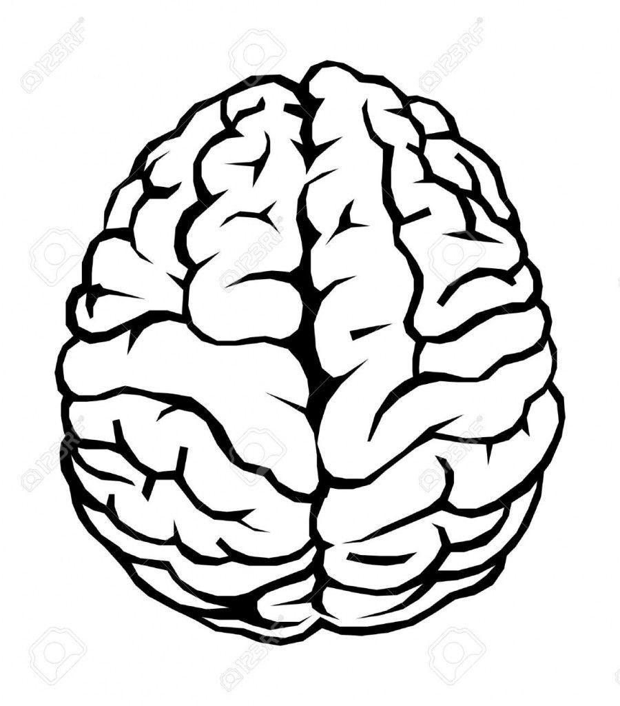 900x1024 More Brain Clipart Media Clerk In Brain Drawing, Brain