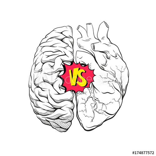 500x500 Versus Letters Human Brain Right And Left Hemisphere And Heart