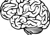200x140 brain clipart creative brain brain clipart brain illustration