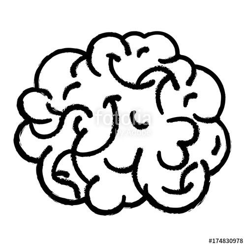 500x500 Figure Human Brain Anatomy To Creative And Intellect Stock Image