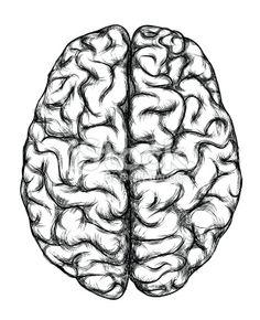 236x290 Inspiring Brain Drawing Images Brain Art, Drawings, Tattoo Ideas