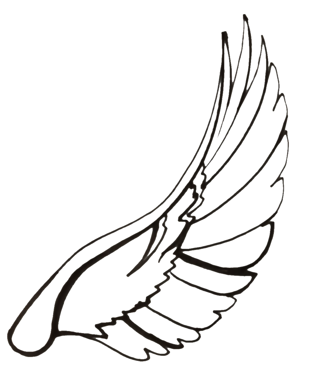 1059x1281 Collection Of Free Wing Drawing Creative Download On Ui Ex
