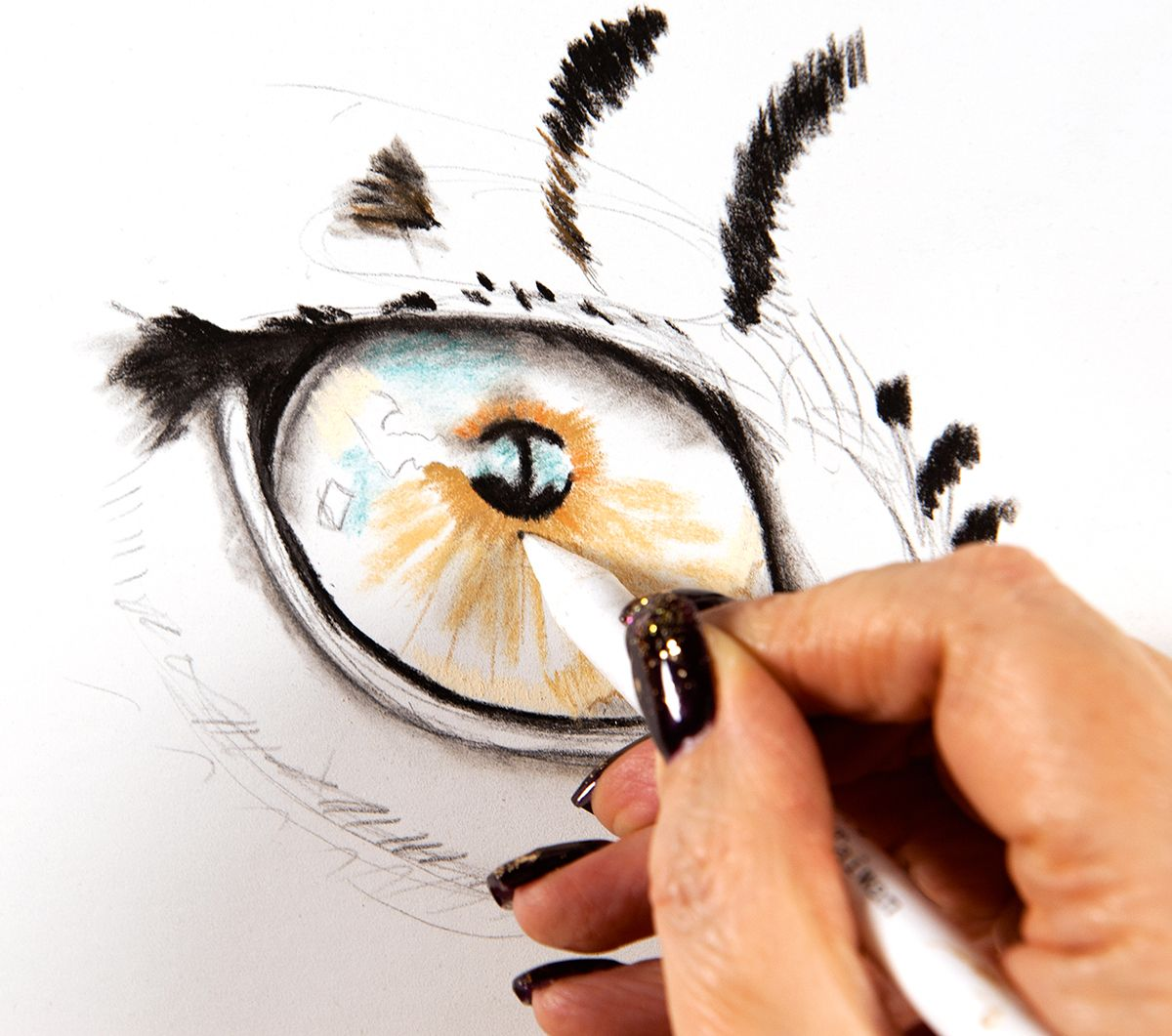 1200x1061 How To Illustrate Animal Eyes Illustrations Animal Drawings