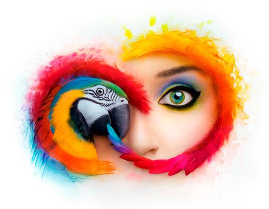 540x420 Adobe Creative Cloud
