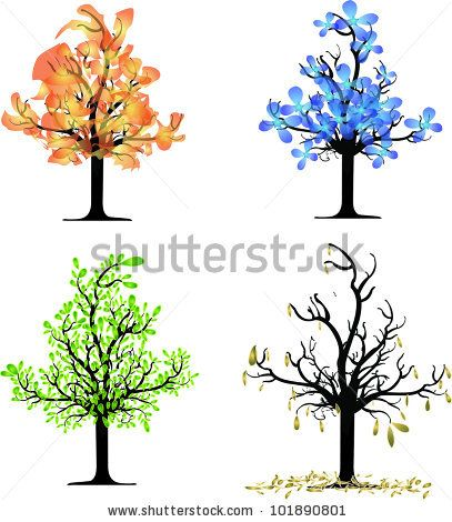 407x470 Four Seasons Tree Drawing Trees Four Seasons
