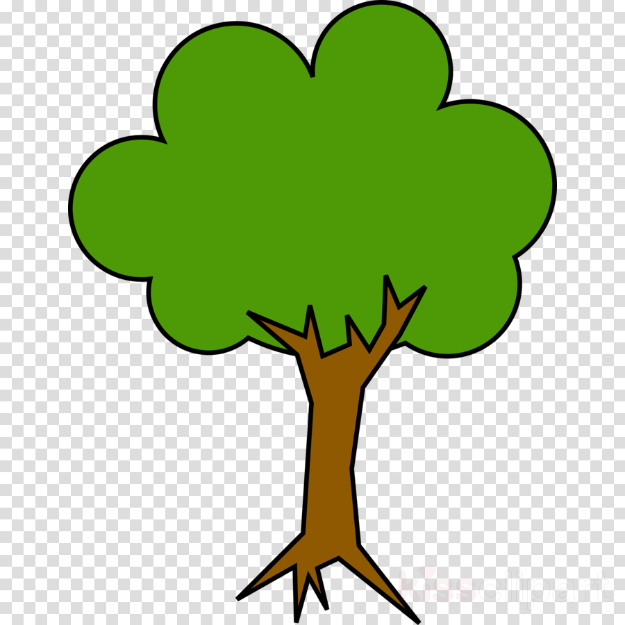 900x900 Tree, Drawing, Green, Transparent Png Image Clipart Free Download