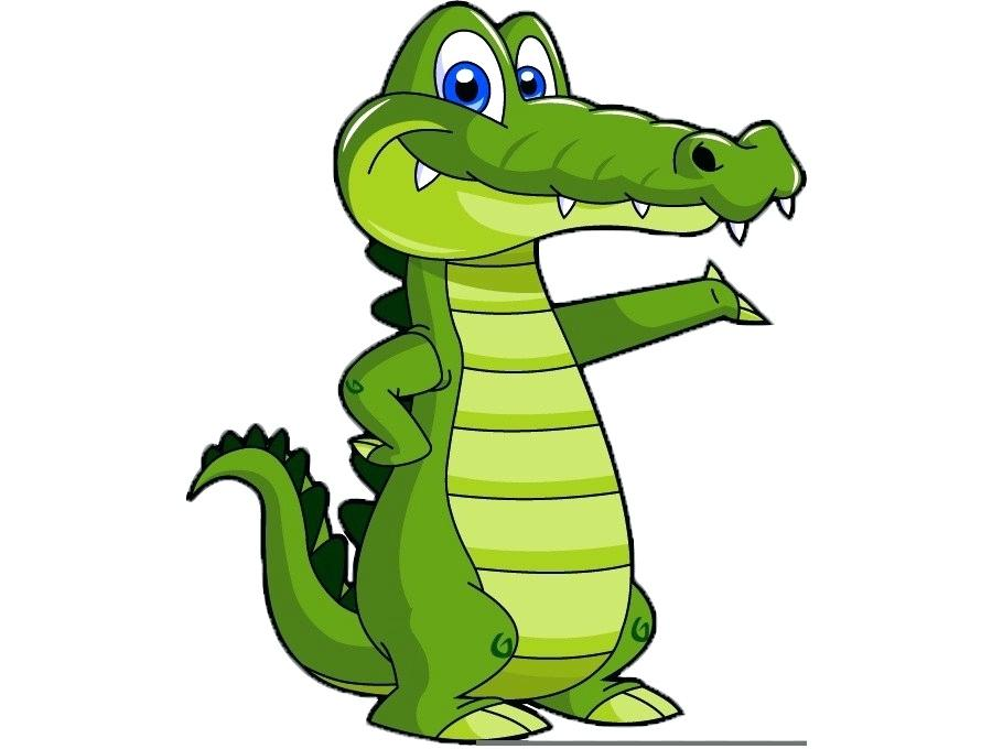900x680 alligator drawing draw alligator alligator drawing for kid