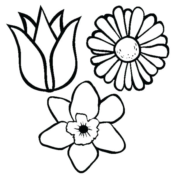 600x612 drawings of pretty flowers easy to draw flowers pretty flowers