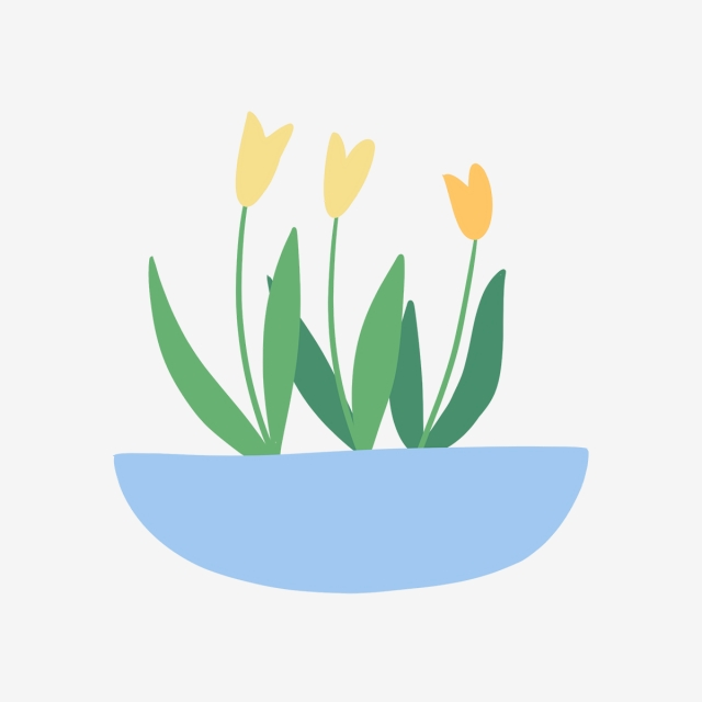 640x640 hand drawn cute lilies in vase, nature, hand drawn, drawing png