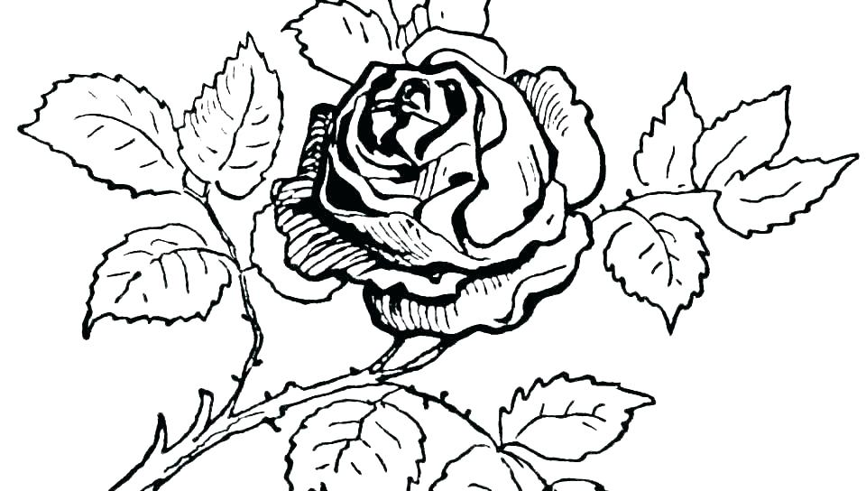 960x544 crosses with roses coloring pages best crosses images