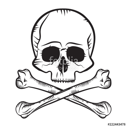 500x500 Human Skull And Crossbones Stock Image And Royalty Free Vector