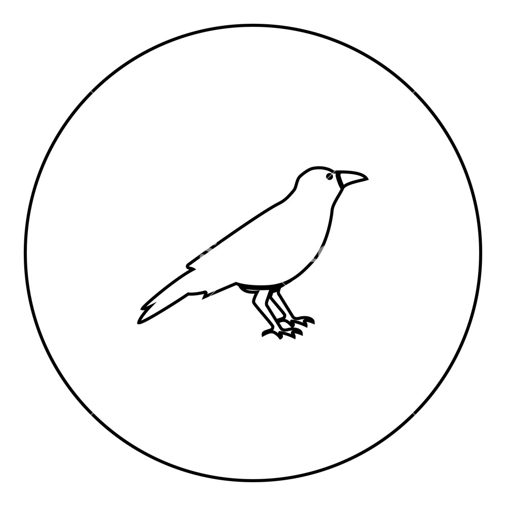 1000x1000 Crow Black Icon In Circle Outline Vector Illustration Image