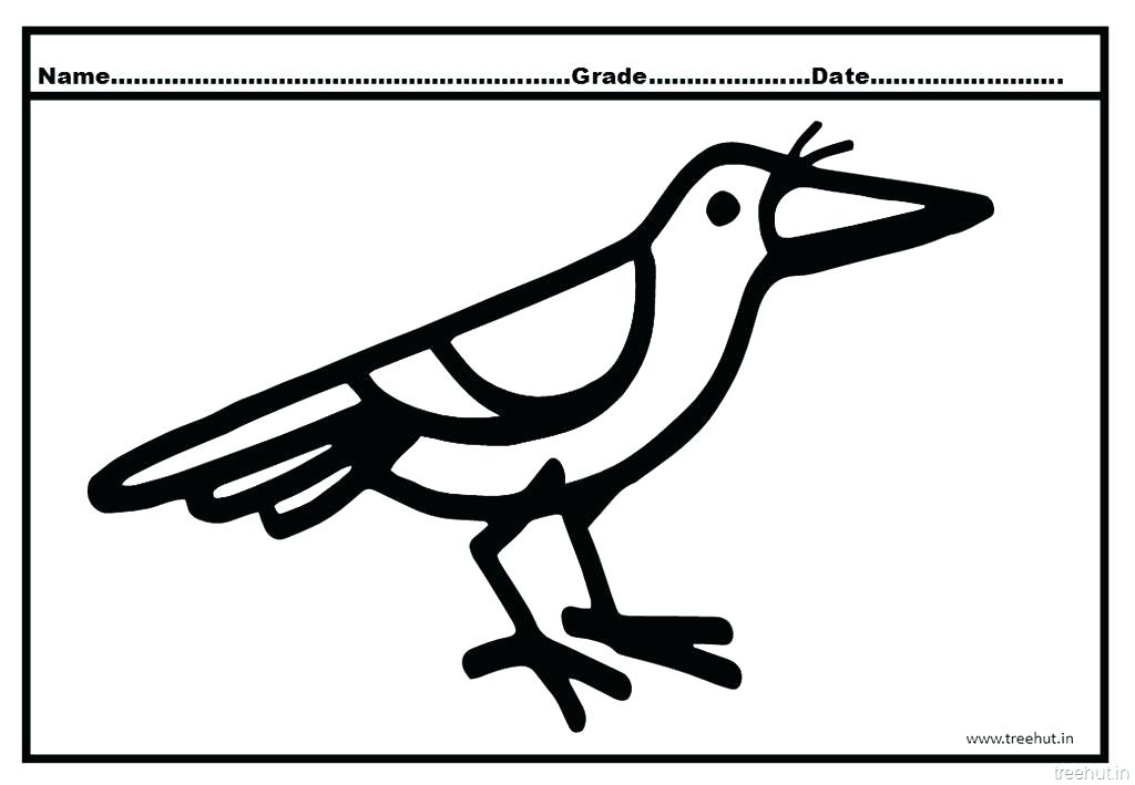 1024x709 Crow Drawing Worksheet For Free Download