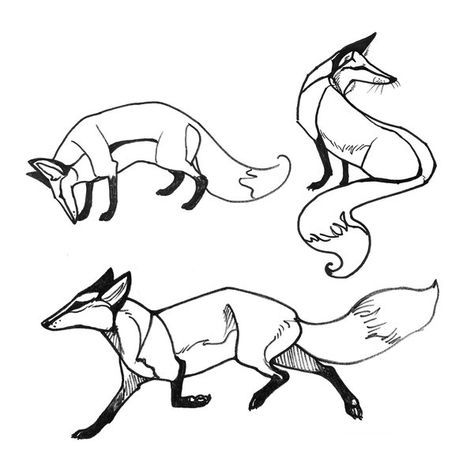 474x473 Fox Face Drawing