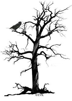 236x333 Pictures Of Crows In Trees
