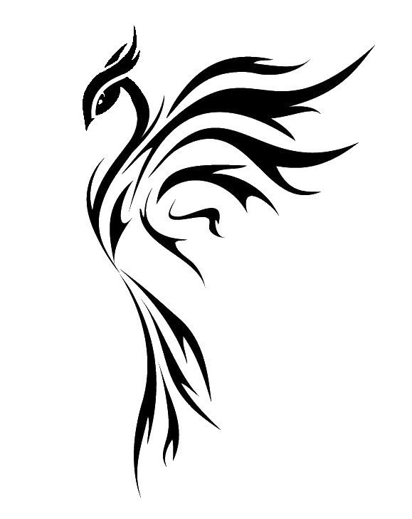 579x729 Phoenix Drawing Crow For Free Download