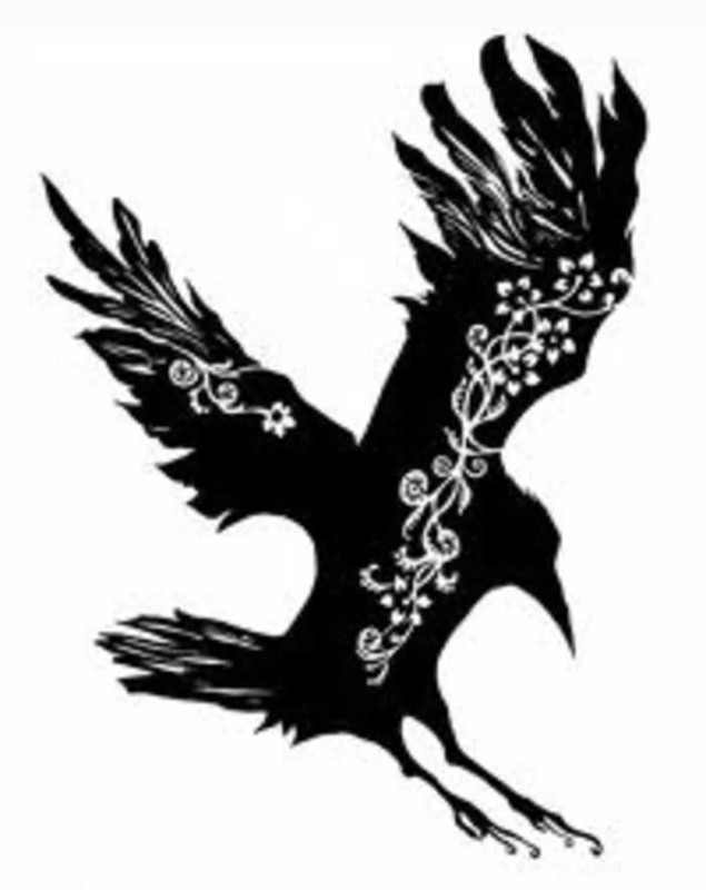 635x800 Outstanding Flying Black Crow Tattoo Design Graphics
