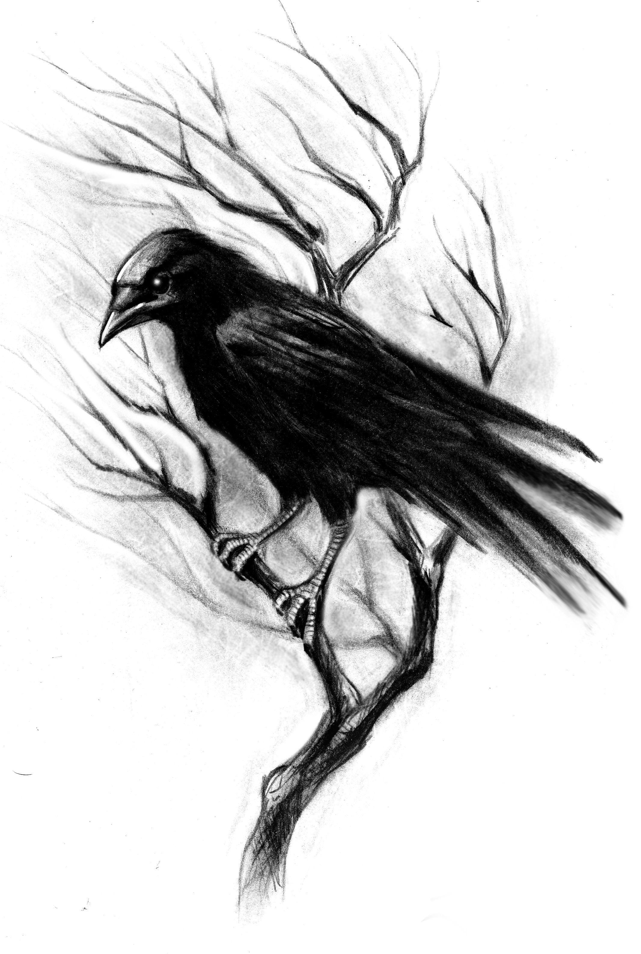2133x3173 Tattoos Crow Tattoo Design, Raven