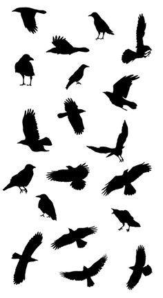 236x431 Ravens Raven Tattoo Ideas Bird Stencil Crow Tattoo Ideas Black