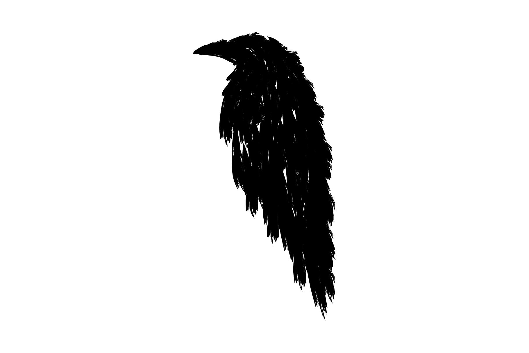 1820x1214 Black Raven Black Crow Tattoo Black Bird Hand Drawn