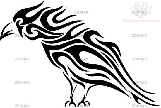 550x368 Celtic And Tribal Crow Tattoo Design