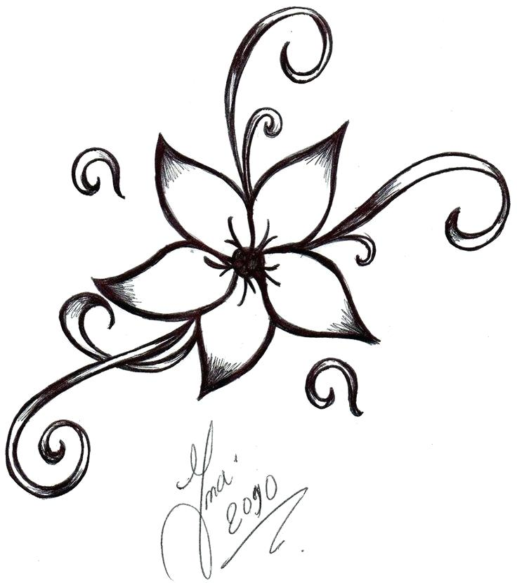 736x830 A Drawing Of A Flower