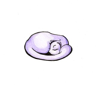Curled Up Cat Drawing