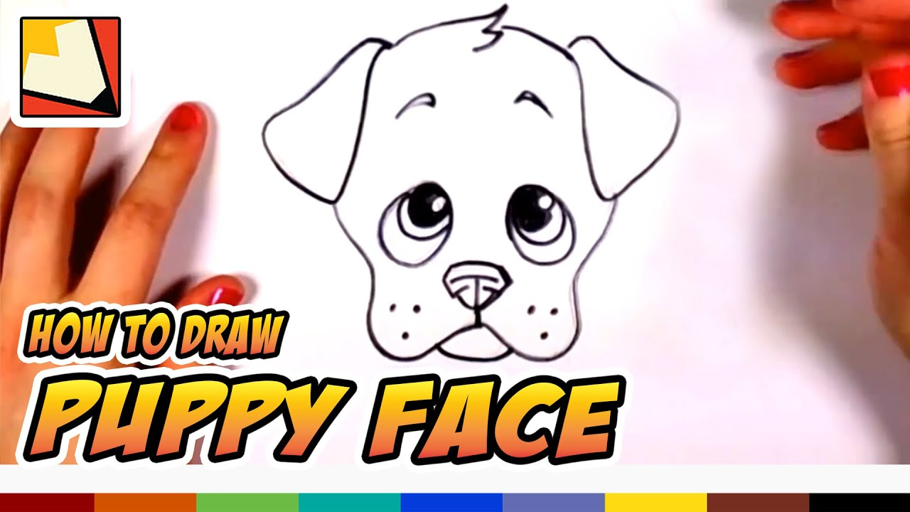1280x720 How To Draw A Cute Puppy Face Step