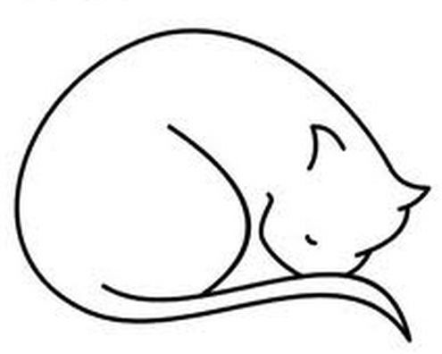 495x396 Curled Up Kitty Nose Tucked Into Tail Drawings Simple Cat