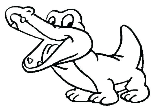 600x429 Alligator
