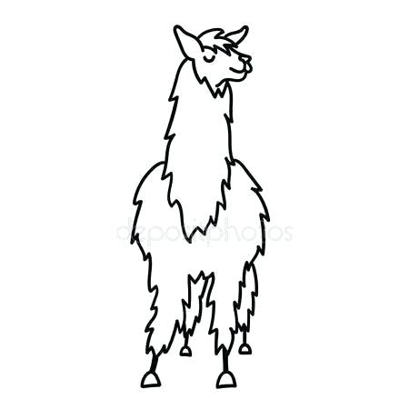 450x450 drawings of llamas llama stamp cute llama drawing step