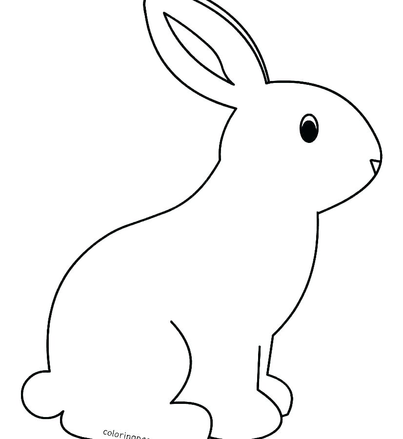 Cute Baby Bunny Drawing | Free download on ClipArtMag