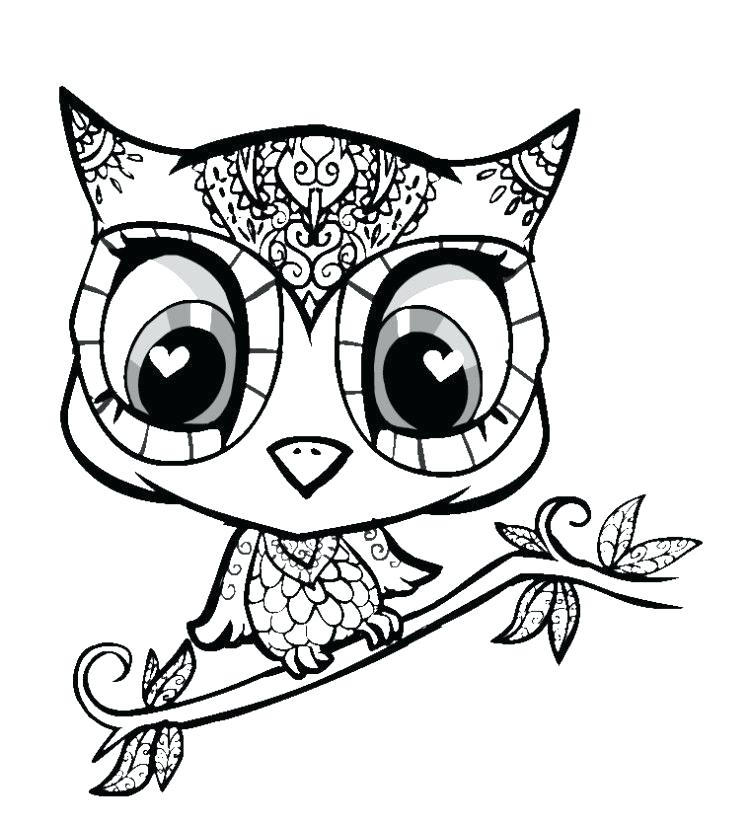 750x825 Cute Owls To Draw Easy Cute Baby Owls To Draw Cute Owl Drawings