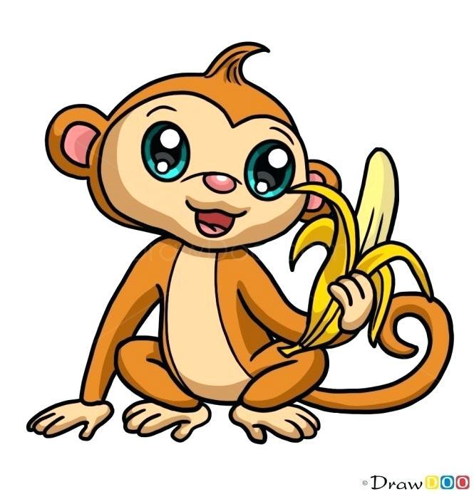 665x694 Easy Monkeys To Draw Easy Monkey Drawings In Pencil