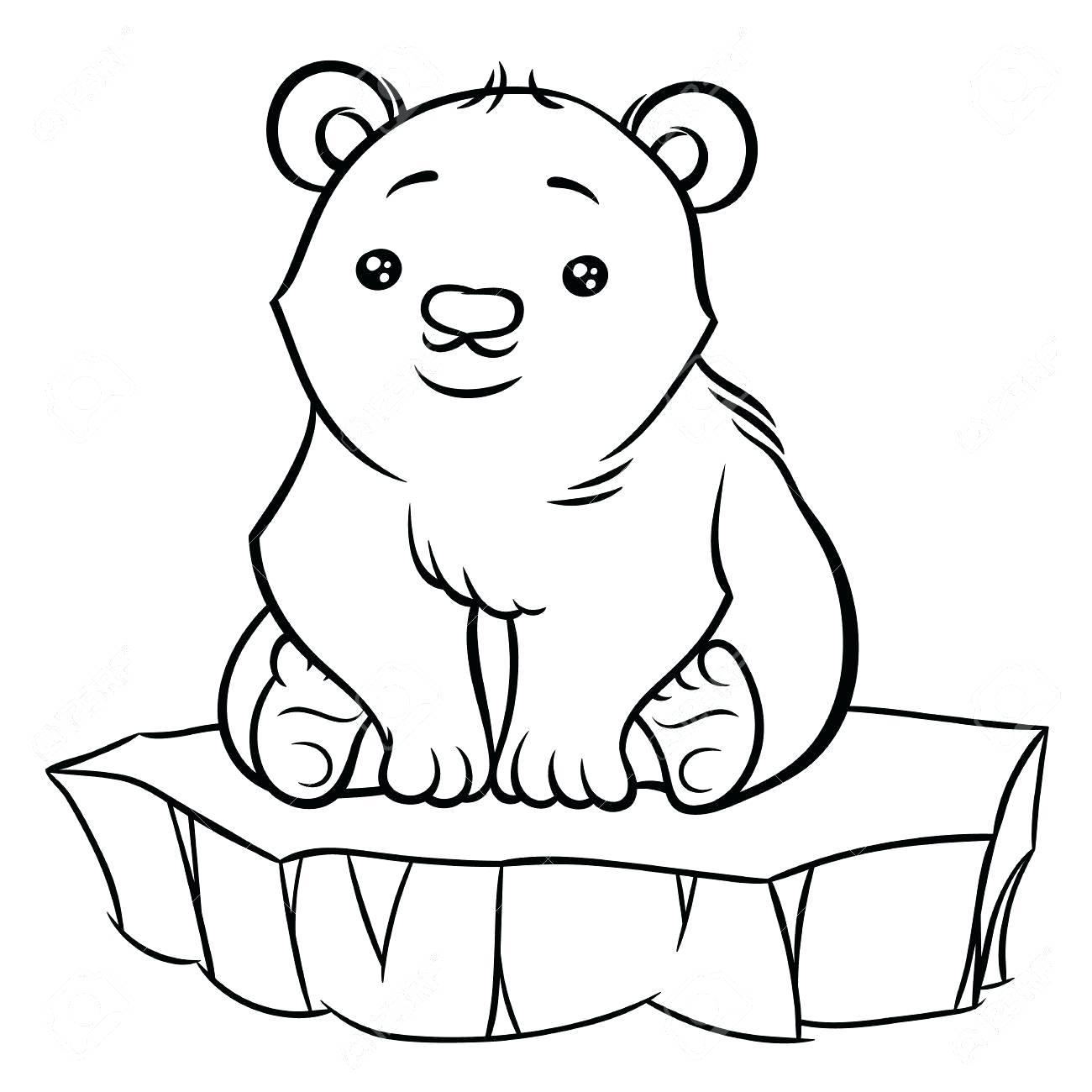 1300x1300 How To Draw A Cute Baby Polar Bear Truseli Club
