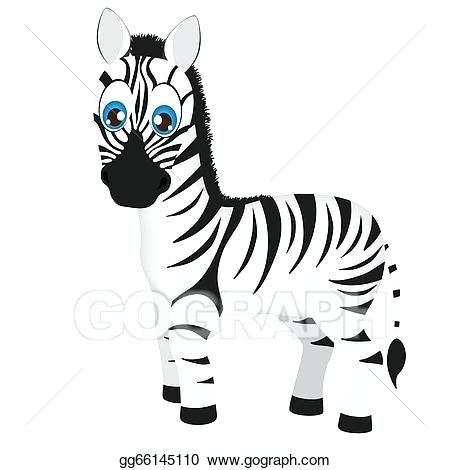 450x470 baby zebra drawing cute baby zebra tattoo design cute baby zebra