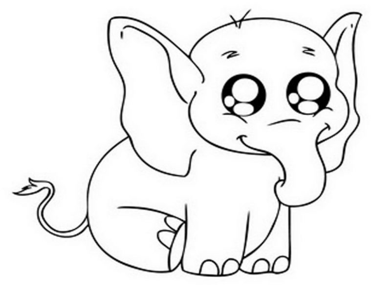 800x600 Download Cute Baby Elephant Coloring Pages Getwallpapers Us