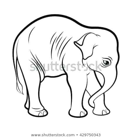 450x470 Elephant Outline Drawing