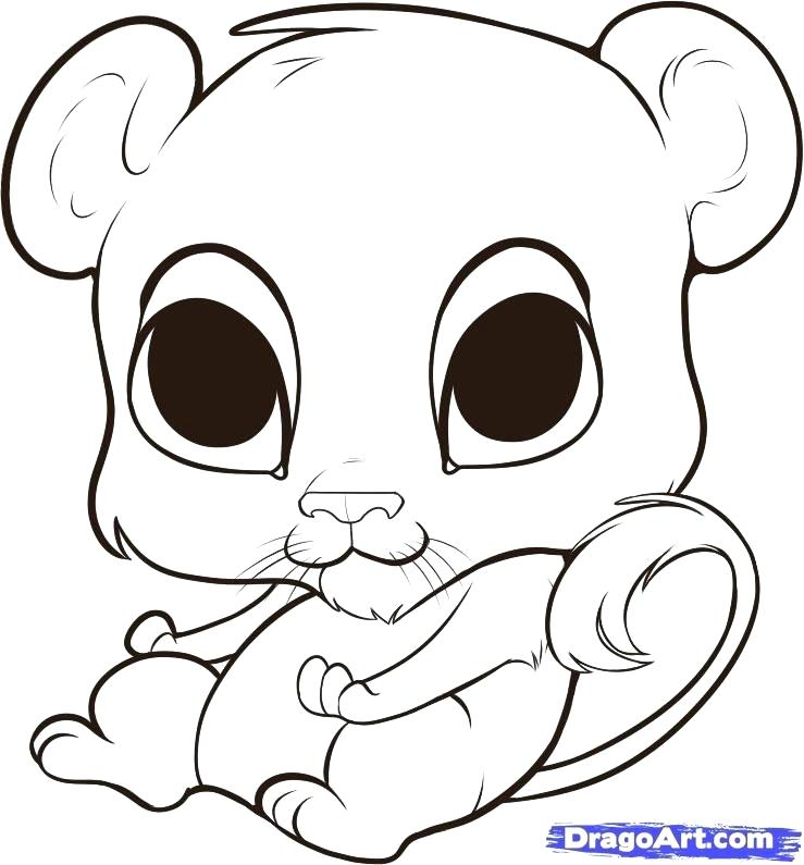 739x795 How To Draw Easy Cute Animals Cute Baby Animal Drawings Gallery
