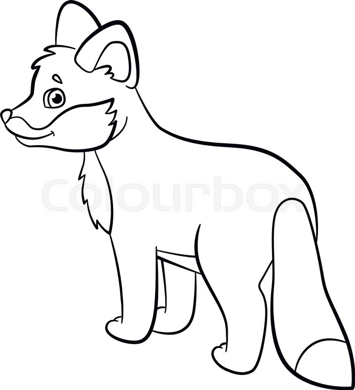 728x800 Coloring Pages Wild Animals Little Stock Vector Colourbox