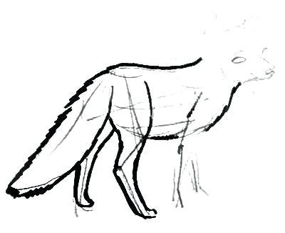 400x326 Fox Drawings Buy Art Realistic Fox Drawings Step