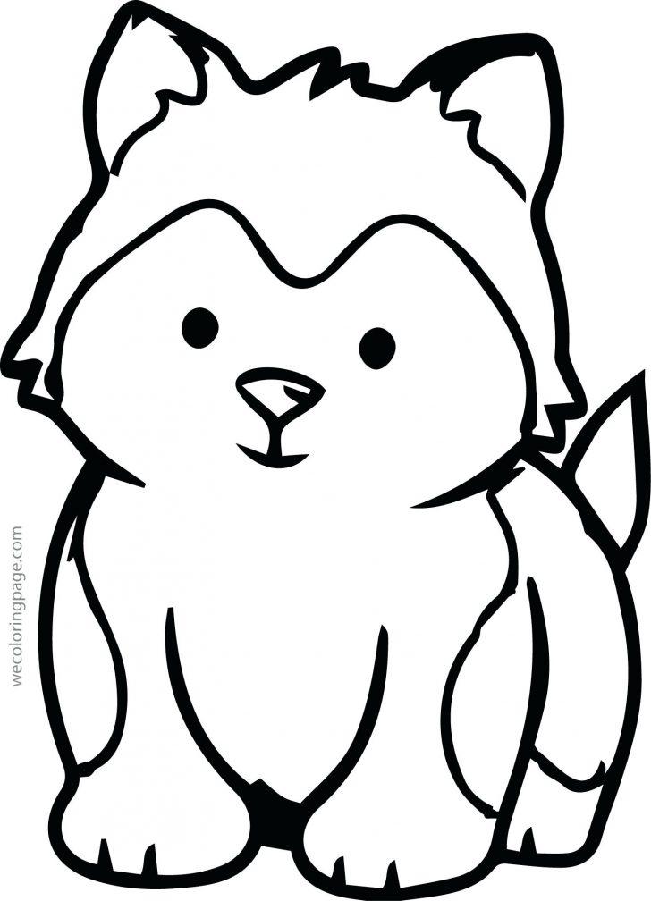 728x1008 Arctic Fox Drawing Easy Face Simple Cute Baby Animal Jam Furry