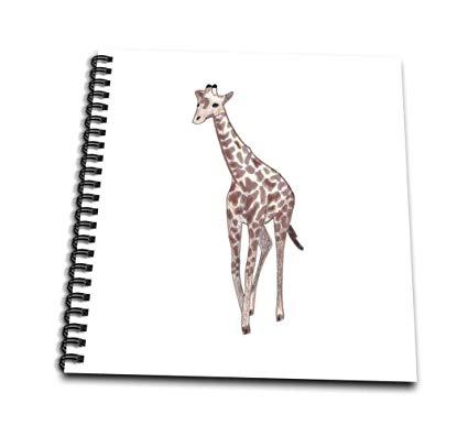 Cute Baby Giraffe Drawing