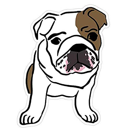 425x426 English Bulldog Cute Decal Sticker Custom Die Cut