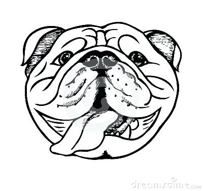 400x375 Drawing Of Bulldog Draw Bulldog Bulldog Drawing Cute