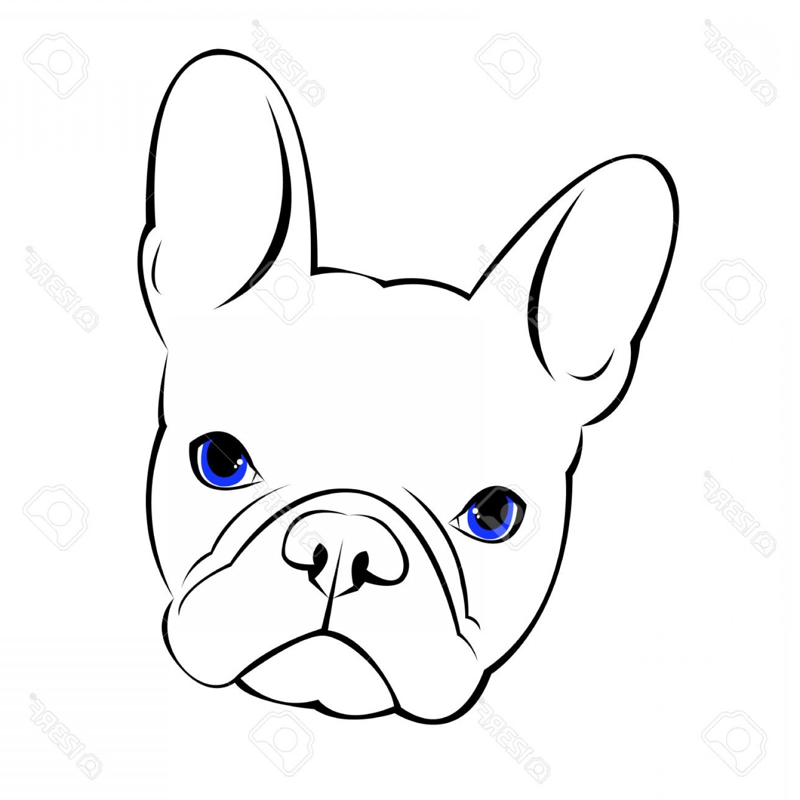 1560x1560 Photostock Vector Bulldog Dog Animal French Vector Illustration