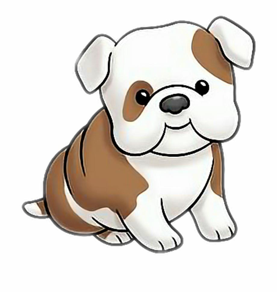 920x969 Dog
