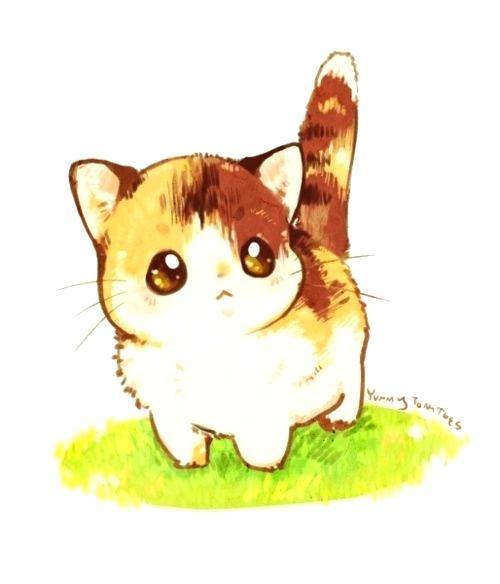 500x584 cute kitten drawings cute kitten simple cute kitten drawings