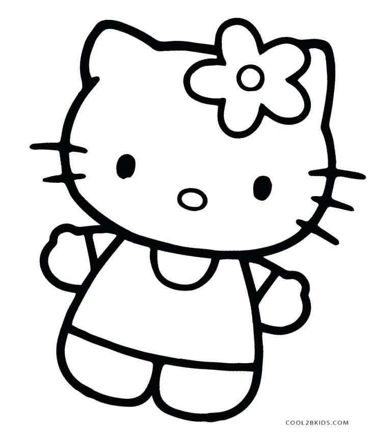 728x862 cat face drawing cat face cat face drawing easy step