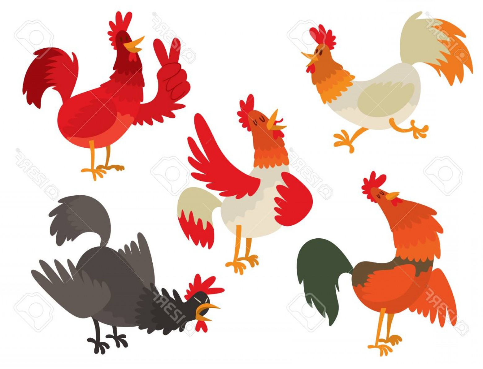 1560x1192 Vector Drawings Of Chicken Soidergi